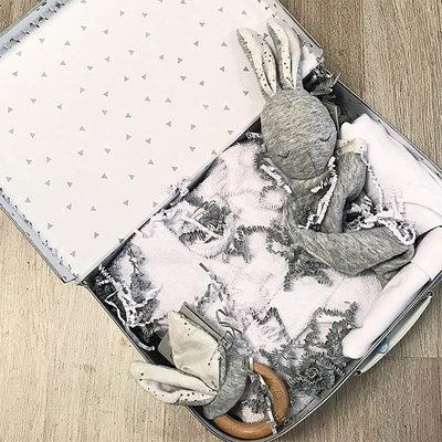 Kraamcadeau koffer groot (wit)